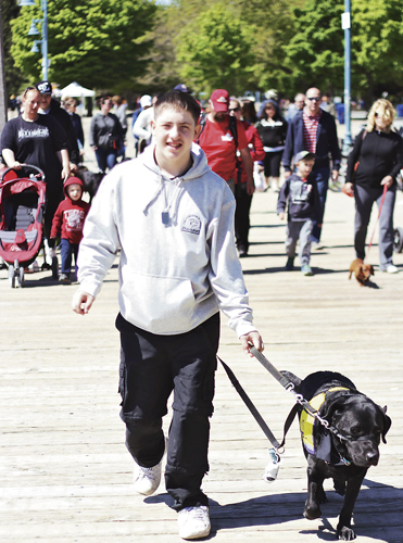 Taylor Martin walks his seizure response dog, Scooby, along Woodbine Beach boardwalk during the Walk for Dog Guides on May 26. The annual walk aimed to raise $1.2 million for the Lions Foundation of Canada Dog Guides. PHOTO: Andrew Hudson