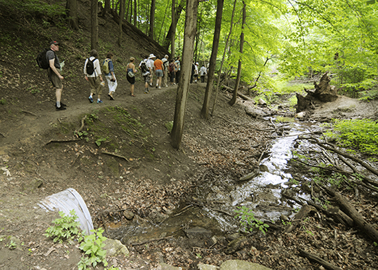 Participants on a Lost Rivers walk file past Small's Creek as it exits a short culvert in Williamson Park Ravine, northeast of Coxwell and Gerrard. The creek alternates between being above and below grade until a short stretch near Gainsborough and Eastwood Roads, where it enters a storm drain which feeds into the lake near the Ashbridges Bay Treatment Plant. PHOTO: Jon Muldoon